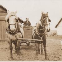 Helen Tylee Doing Farmwork with a Team of Horses